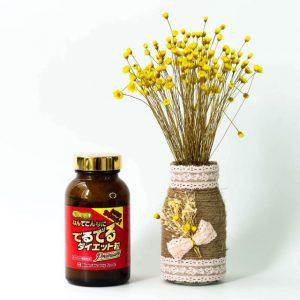 Minami Healthy Foods - địa chỉ bán thuốc giảm cân minami 15kg chất lượng