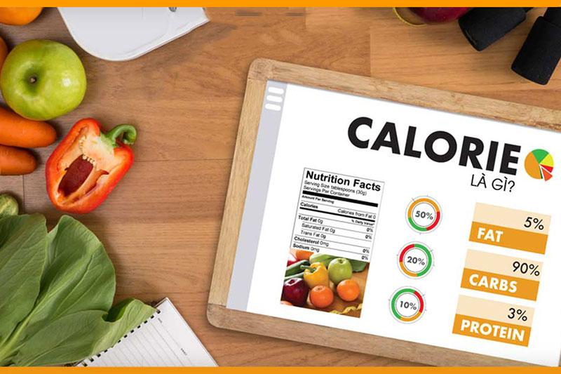 Cách tính lượng calo trong khẩu phần ăn hàng ngày dựa trên cách thành phần trong món ăn